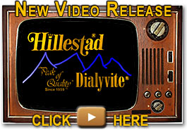 Hillestad/Dialyvite video